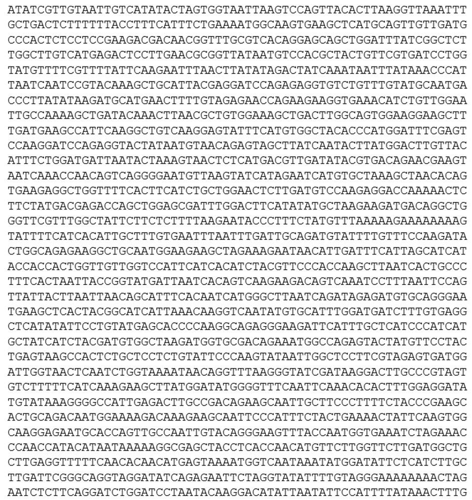 Eine DNA Sequenz.