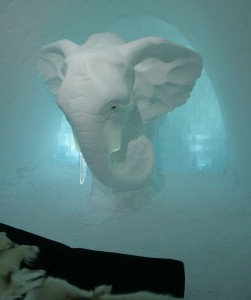 Impressive or scary? An elephant is watching over your sleep. Picture by Peter Preusse, FZJ.
