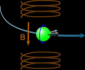 Präzession im Magnetfeld aufgrund des magnetischen Dipolmoments (Bild: VH)