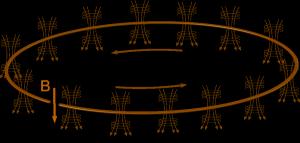 Ein magnetischer Speicherring. Die magnetischen Felder halten die geladenen Teilchen auf einer Kreisbahn. (Bild: VH)