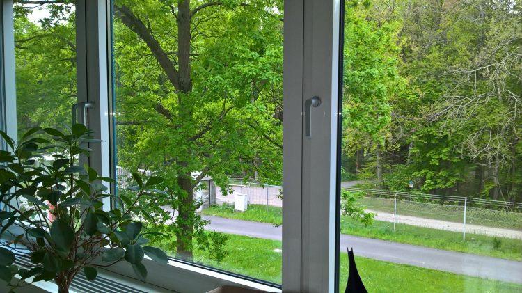 Forschungszentrum Jülich / Dr. Daniel Felten