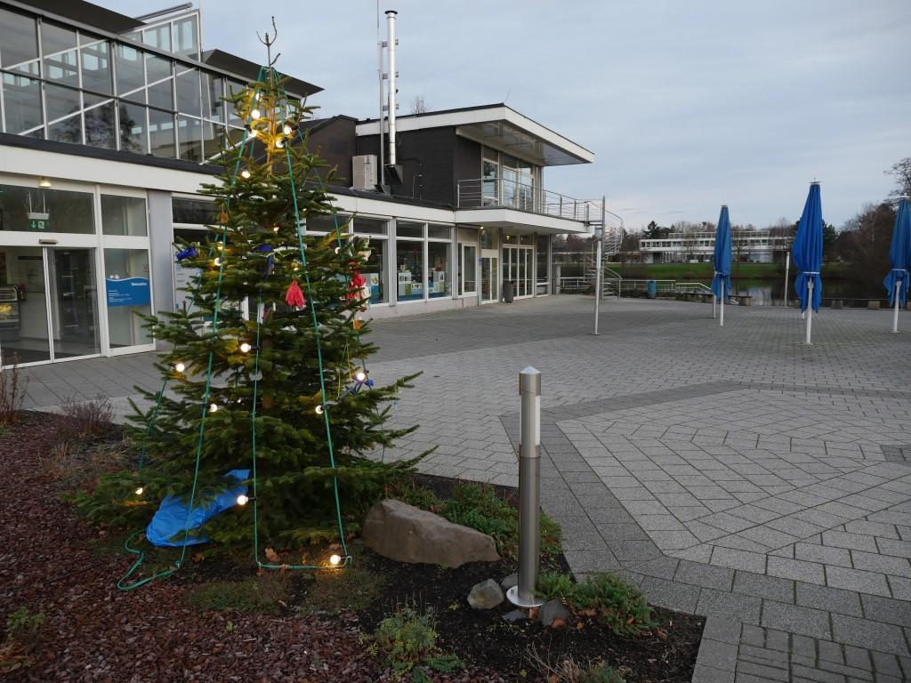 Tannenbaum am Seecasino