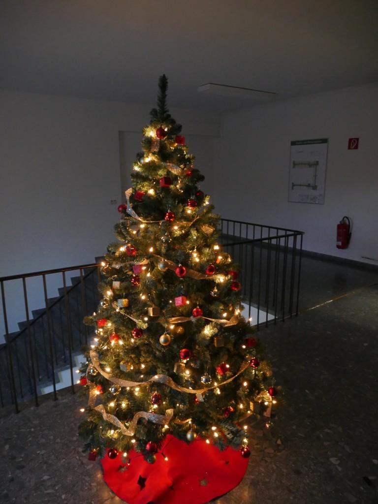 Tannenbaum im Gebäude des IEK und INM